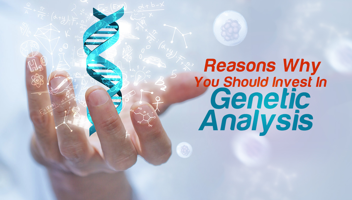 Reasons Why You Should Invest in Genetic Analysis